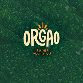home_quadrato_orgao_768cce6db8aa60819e6b24b4e982a18d