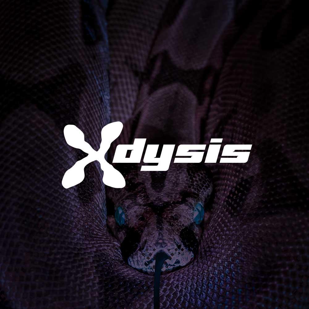 home_quadrato_X-Dysis